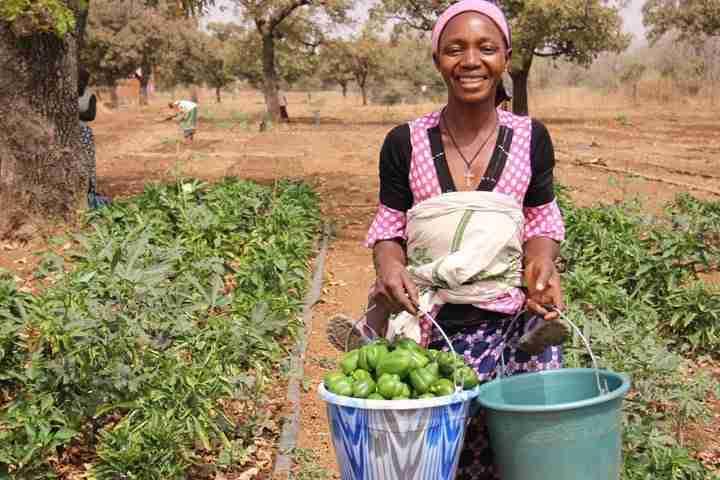 Women working field