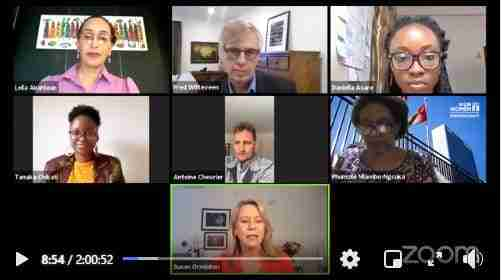 View of panellists at webinar